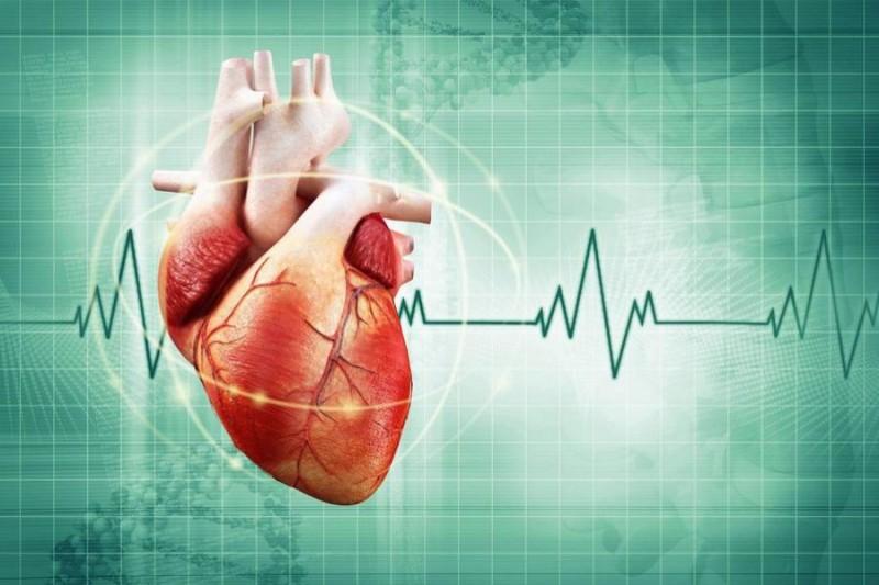 Какой пульс при аритмии сердца